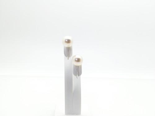 アコヤ真珠シンプルイヤリング