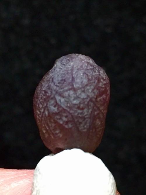 7) 「スーパー・バイオレット」紫ゴビアゲート・ビーズ