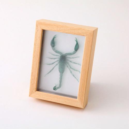 3D透明標本 サソリ フレーム グリーン