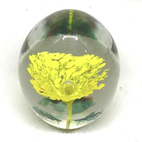 黄色いお花のような球体 水中花(SA270)