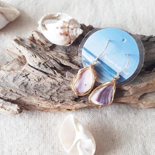 Purplish shell pierce