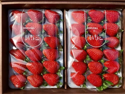 中粒♪完熟☆濃く甘いちご おいCベリー 36粒入