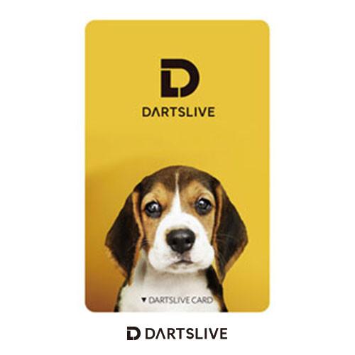 Darts Live Card [181]