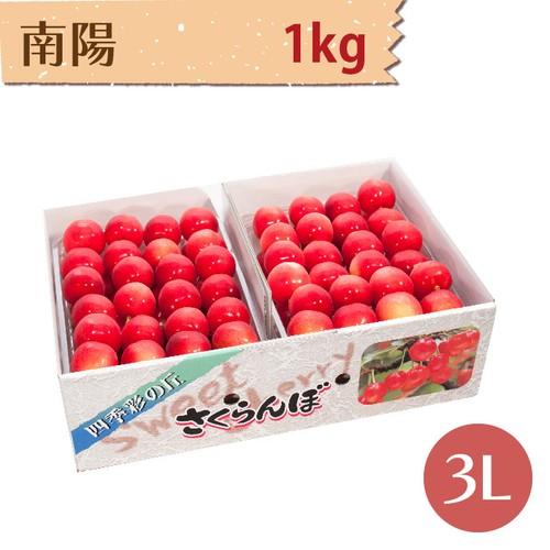 【さくらんぼ】南陽 1kg【3L】