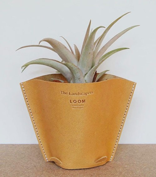 LEATHER POT