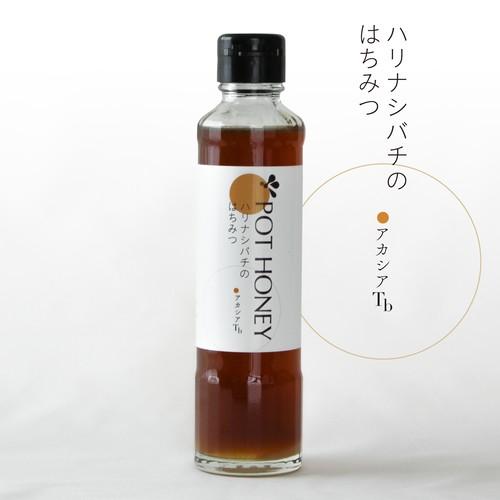 ハリナシバチの蜂蜜 POT HONEY アカシア/ T.b 250g
