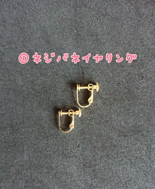 ① ネジバネイヤリング