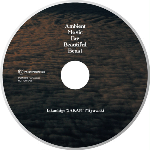 """Ambient Music for Beautiful Beast""  Takashige ""J.A.K.A.M."" Miyawaki"