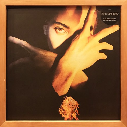 Terence Trent D'Arby – Neither Fish Nor Flesh: A Soundtrack Of Love, Faith, Hope And Destruction (LP)
