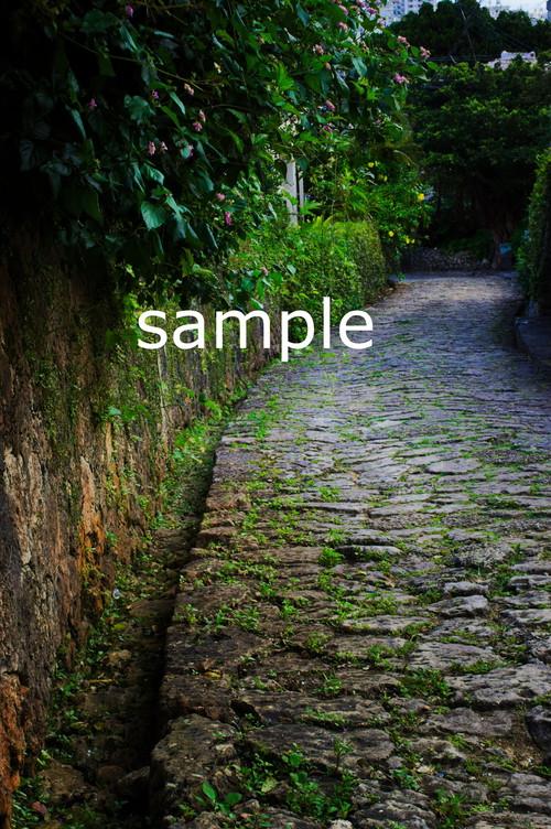 石畳道の歩み【写真データDSC09261S】