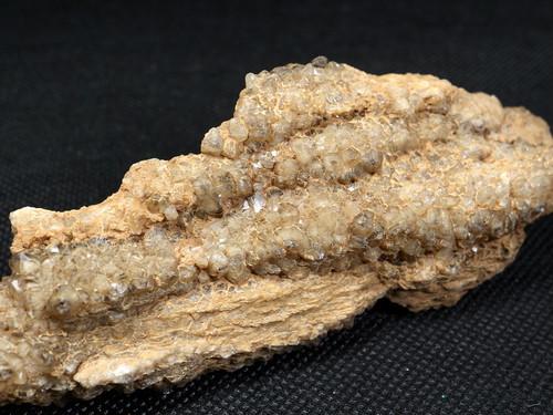 ユタ州産 珪化木 ペトリファイドウッド 112g PFW007  鉱物 標本 原石 天然石 パワーストーン
