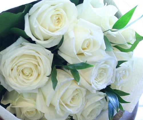 1ダースのバラ dozen roses