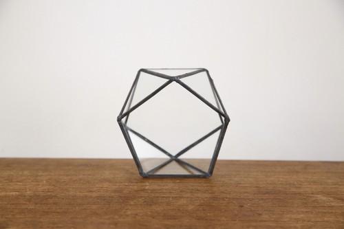 五角形 ガラス テラリウム2 【送料無料】