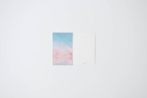 桜と青空を描いた、ミニカードセット