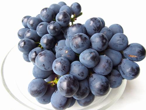 大粒葡萄*約1kg箱2〜3房入り