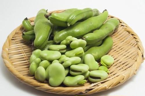 【大和野菜】大和一寸蚕豆