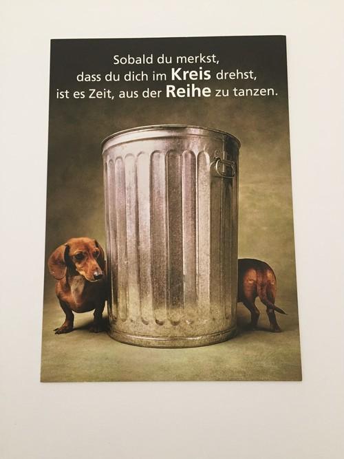 ドイツ直輸入! ダックスフンドの絵柄が素敵な ポストカード