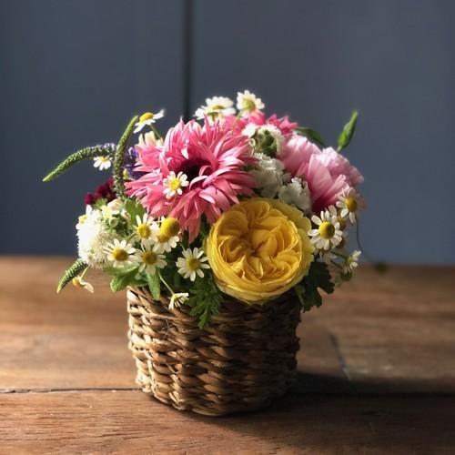 季節の花カゴ S (ホグラバスケット)
