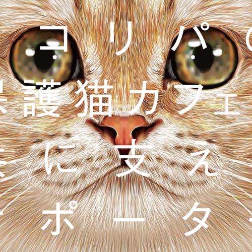 NECOREPA FANCLUB ネコリパファンクラブ 月々1500円から猫助け!