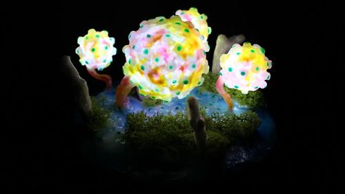 箱庭 Healing lamp 腐海の森