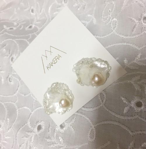 white shell ピアス