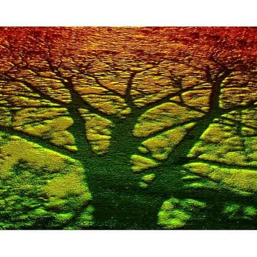 デジタルアート 神秘の森・08(生命力の樹)
