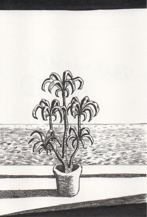 太久磨「自画像としての植物 ペン画9」