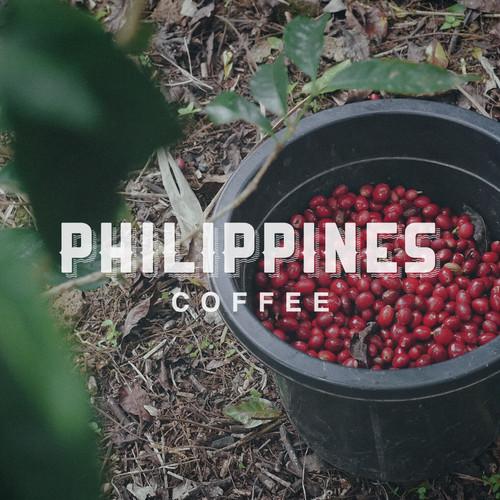 フィリピン  カラサン種  ウォッシュド製法  100g