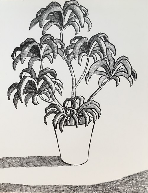 太久磨「自画像としての植物 ペン画34」