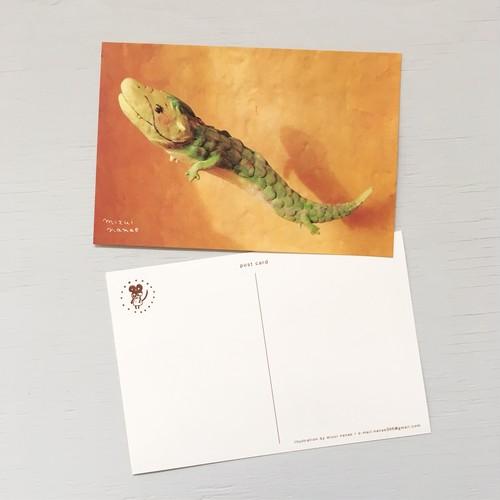 ポストカード(たつ)