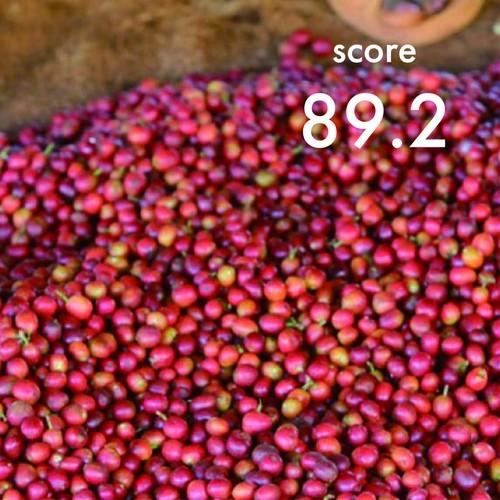 【Top of Top Coffee】200g Kenya Nyeri Kamoini AA