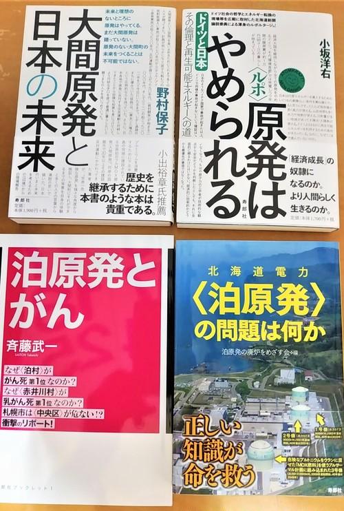 原発関連本4冊セット