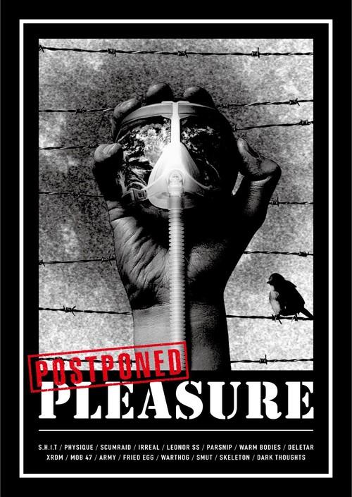 V.A / Postponed Pleasure(ZINE+CD)
