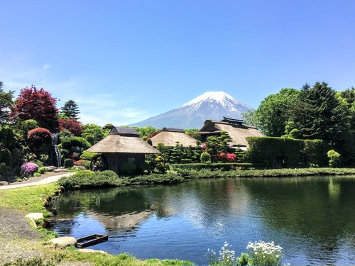 SPECTACULAR MT FUJI with Lunch