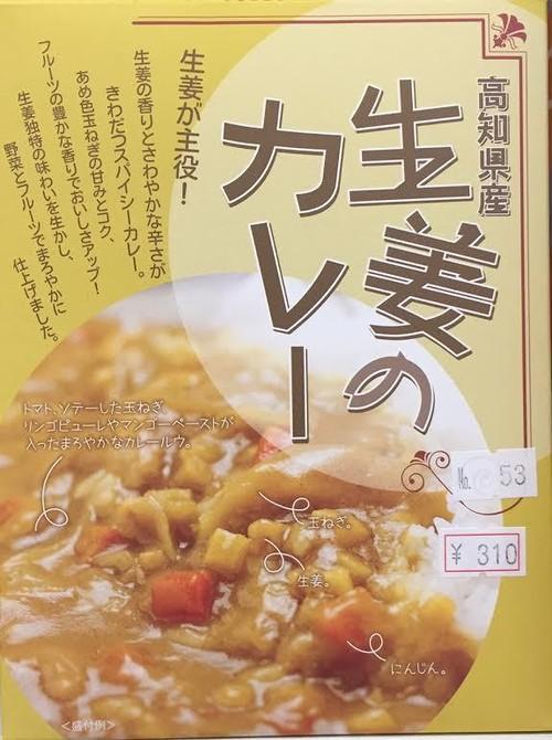 【人気急上昇‼️身体に良い⁉️】高知県産生姜のカレー