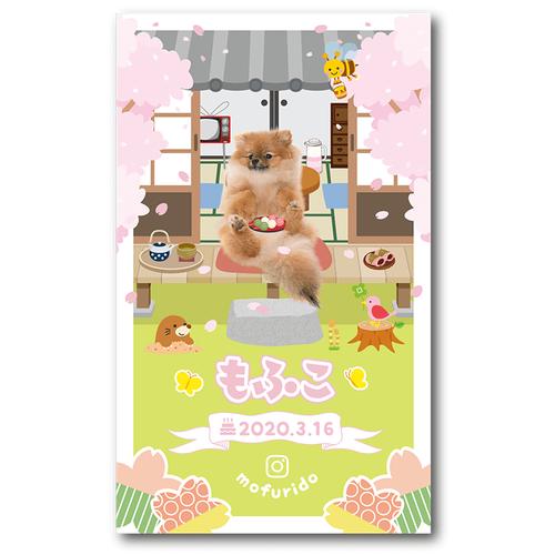 ペット名刺_長方形タイプ_春の縁側デザイン(1個50枚)_rec_h015-d