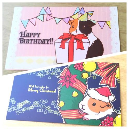 モルモットバースデー&クリスマスカード