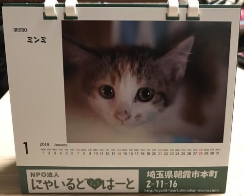 保護猫たちの2018卓上カレンダー