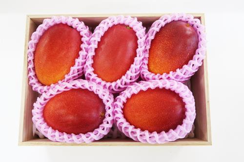 しあわせ完熟マンゴー 4~6玉入り(桐箱)