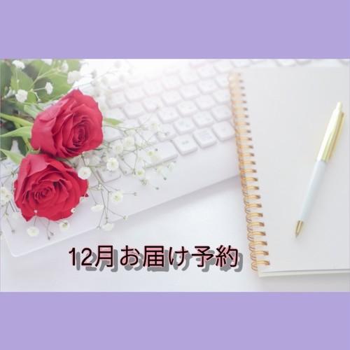 【12月発送分】自分取扱い説明書