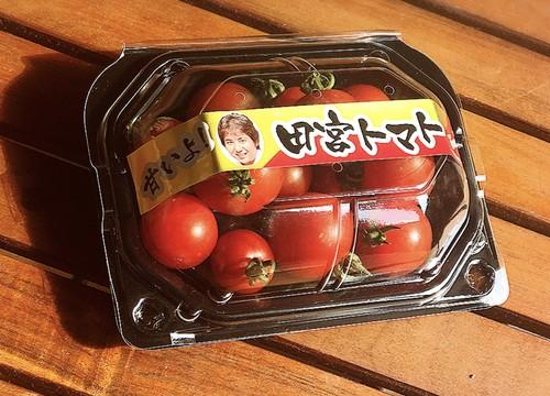 ミニトマト20パック入/箱