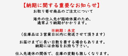 Horai アンクレット ブレスレット ステンレス 繊細 雪 スノー ローズゴールド gz019 【お取り寄せ商品】