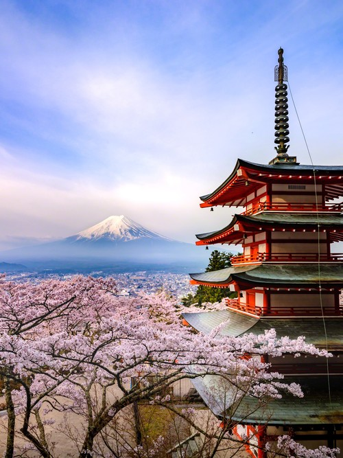 Spring of Japan 2:日本の春 2
