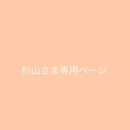 杉山さま専用ページ