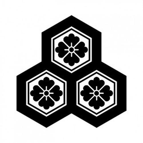 持合三つ盛亀甲花角 aiデータ