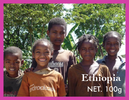 100g エチオピア