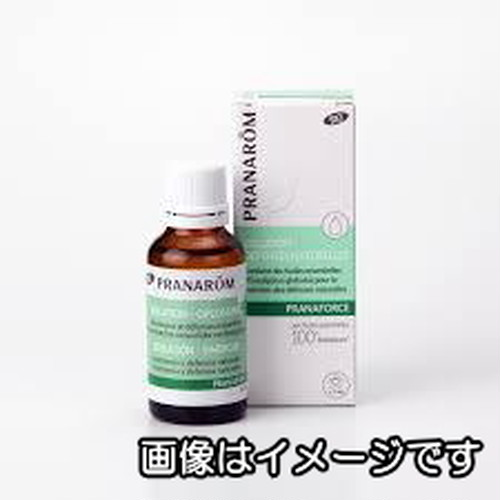 プラナフォース・ローション(化粧用油)|プラナロムマッサージオイル(ブレンドオイル)