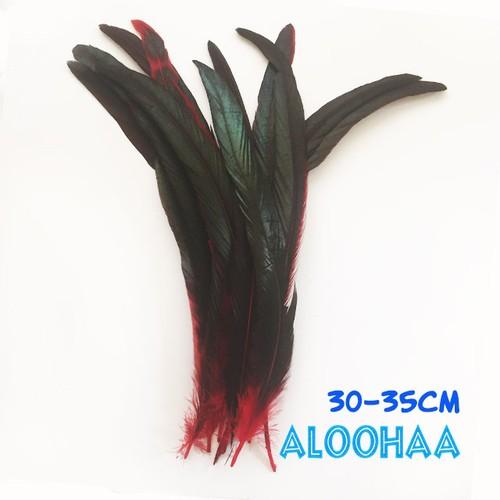 ロングフェザー 【赤】#30-002RE30-CT 30-35cm タヒチアン 衣装 材料 ルースターテール 染め 羽根