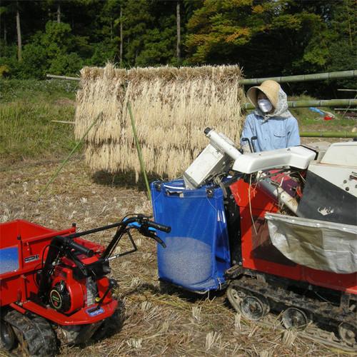 ササニシキ白米・五分搗き30キロ(平成29年産自然栽培米)