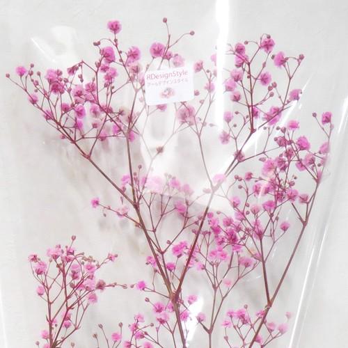 プリザーブドフラワー花材 カスミソウ 10g